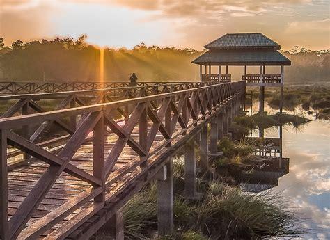 Labi Nature Tour - Brunei Tourism