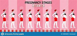 40 Weeks Of Pregnancy Stages From A Pregnant Woman With