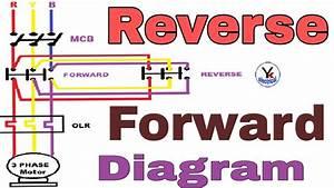 Reverse Forward Motor Starter