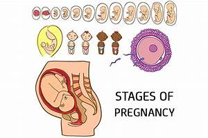 Manual Sperm Implantation After Sex