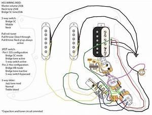 Fender Hss Strat Wiring Diagram
