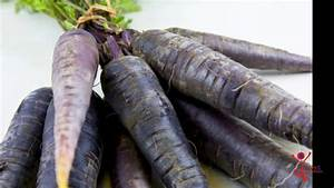 Black Carrot Herb Uses  Benefits  Cures  Side Effects  Nutrients