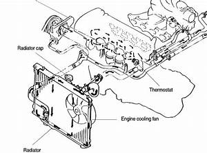 Where Is The Thermostat Located On A 2001 Kia Spectra Top Hose Or Bottom Hose  Motor Block Or