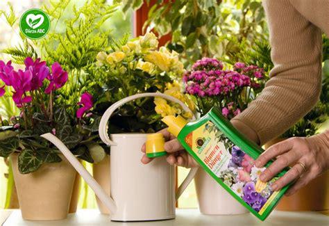 Dārza ABC - Puķes balkona kastēs - stādīšana