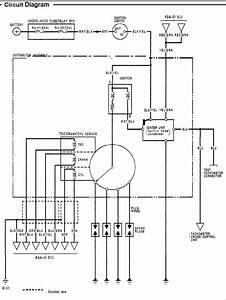 D16z6 Distributor