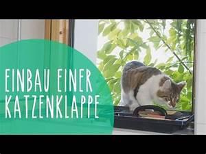 Katzenklappe Für Fenster : katzenklappe in isolierglas fenster einbauen youtube ~ A.2002-acura-tl-radio.info Haus und Dekorationen