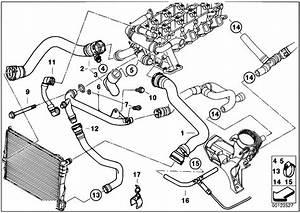 Original Parts For E39 520d M47 Sedan    Engine   Cooling System Water Hoses