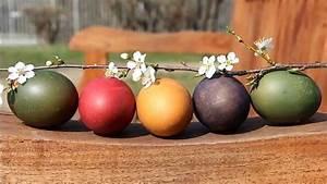 Eier Natürlich Färben : nachhaltig kreativ nat rlich eier f rben alnatura ~ A.2002-acura-tl-radio.info Haus und Dekorationen