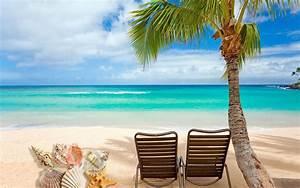 Beach Shells HD desktop wallpaper : Widescreen : High ...