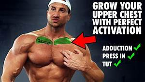 The Only 3 Upper Chest Exercises You Need For The  U0026quot Upper