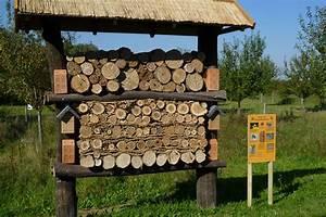 Bienenhotel Selber Bauen : insektenhotel selbst bauen tipps und tricks lbv ~ A.2002-acura-tl-radio.info Haus und Dekorationen