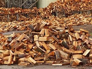 Brennholz Richtig Lagern : brennholz richtig lagern ~ Watch28wear.com Haus und Dekorationen