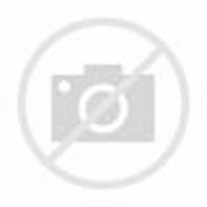 "Polar Bear Has Special Bond with Human ""Dad"""
